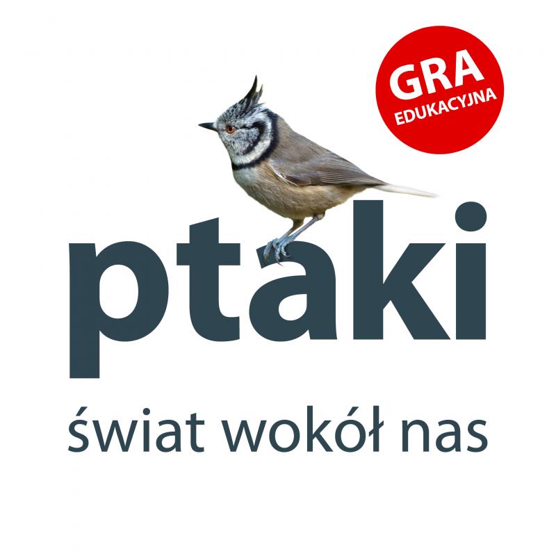 ptaki. świat wokół nas